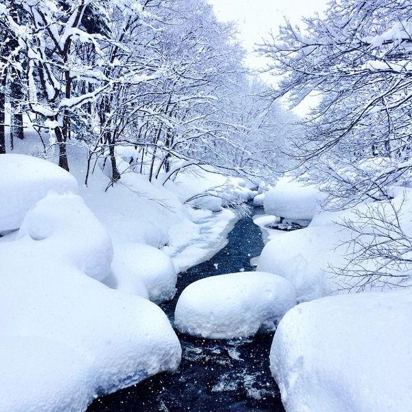 3 Prefektur yang Wajib Dikunjungi di Jepang