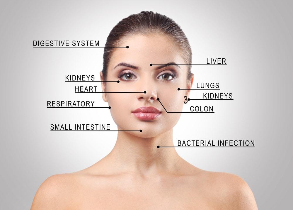 Mengetahui Masalah Organ Tubuh Dari Letak Jerawat