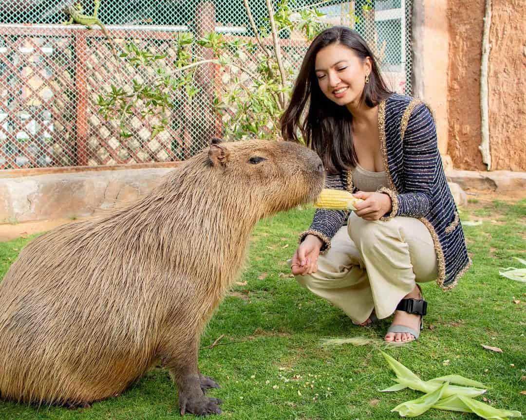 Raline Shah Menghabiskan Waktu di Kebun Binatang Eksklusif Fame Park Dubai Bersama Hewan Eksotis