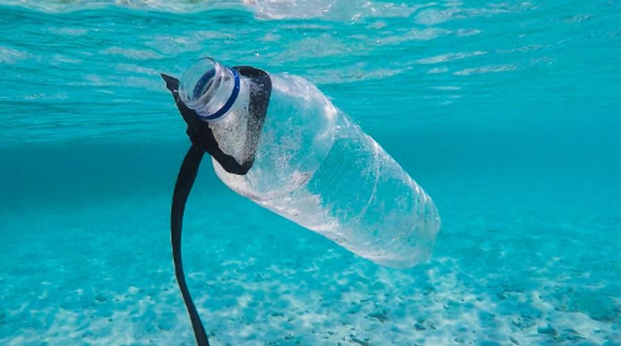Bisakah Kita Hidup Tanpa Plastik?