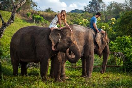 Paket Liburan All In One Dari Bali Zoo