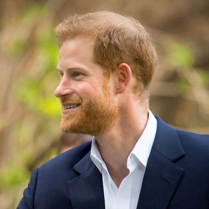 Pangeran Harry Sebut Pekerjaan yang Sebenarnya Ia Inginkan