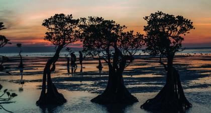 Cerita Tentang Sumba: Hidden Gem Indonesia dari Nusa Tenggara Timur