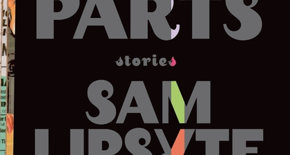 Weekend Read: The Fun Parts: Stories