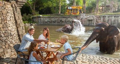 5 Aktivitas Seru di Bali Zoo