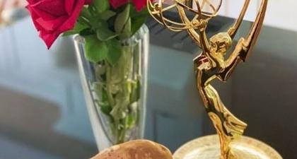 Momen-Momen Paling Canggung di Acara Virtual Emmy 2020