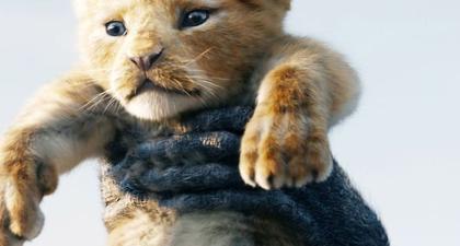 Sekuel Lion King Akan Segera Hadir