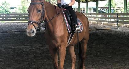 Intip Momen Keseruan Rafathar Ketika Latihan Berkuda!