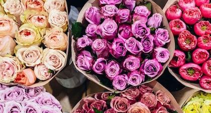 Peneliti Menemukan Bahwa Bunga Dapat Mengurangi Rasa Sakit