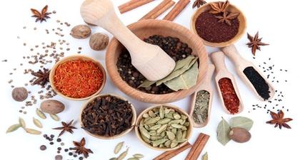 6 Tanaman Herbal untuk Meningkatkan Daya Tahan Tubuh